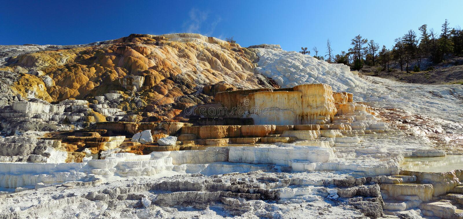Mammoth Hot Springs, Yellowstone National Park, Wyoming, USA, Evening Sun on Minerva Terraces. Evening light shines on the panorama of the lower terraces from royalty free stock photo