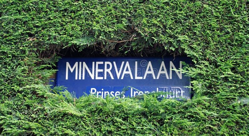 Minervalaan gatatecken, Amsterdam arkivfoton