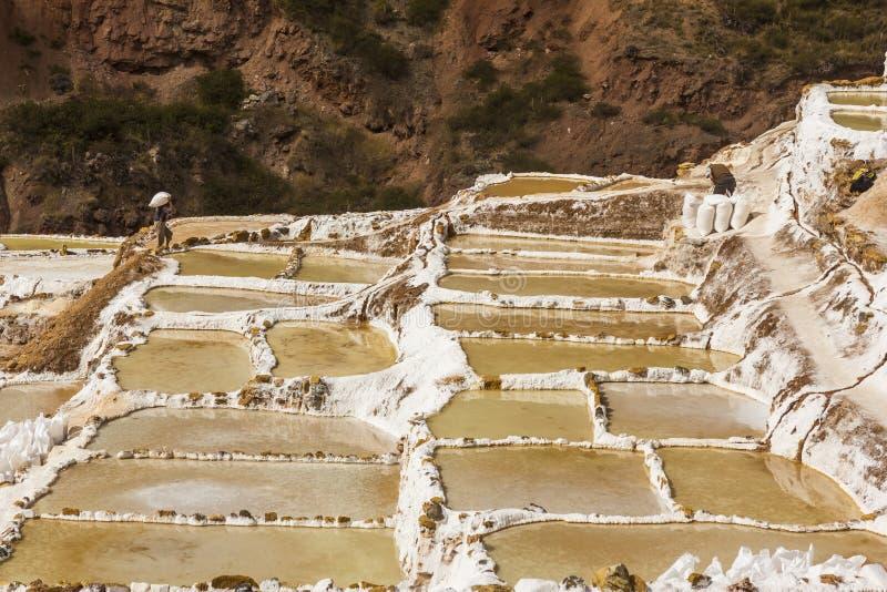 Mines de sel de Maras les Andes péruviens Cuzco Pérou photos stock