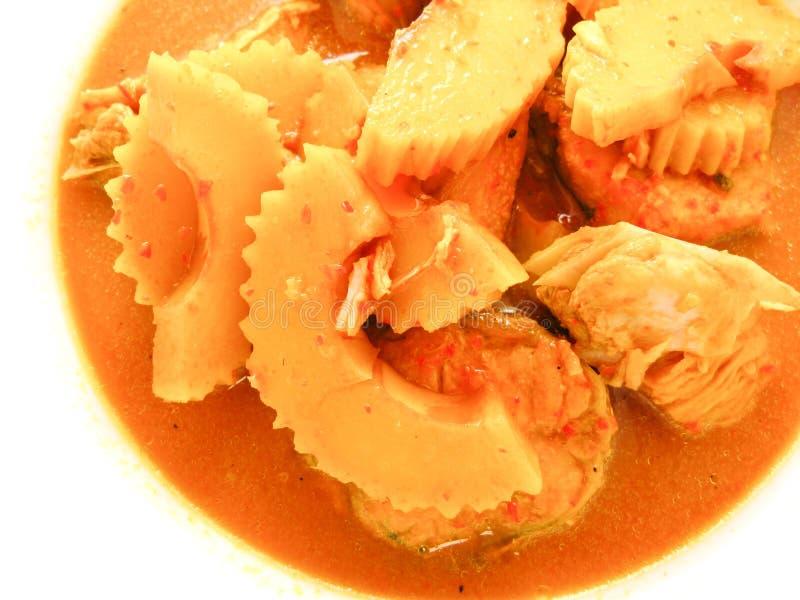 Minestra acida piccante con il pesce immagine stock libera da diritti
