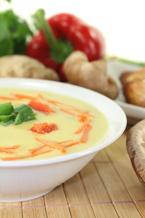 Minestra asiatica del curry con il pollo fotografie stock libere da diritti