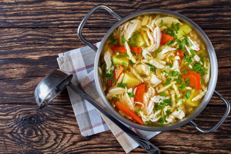 Minestra calorosa di verdure tagliuzzata e del pollo fotografie stock libere da diritti