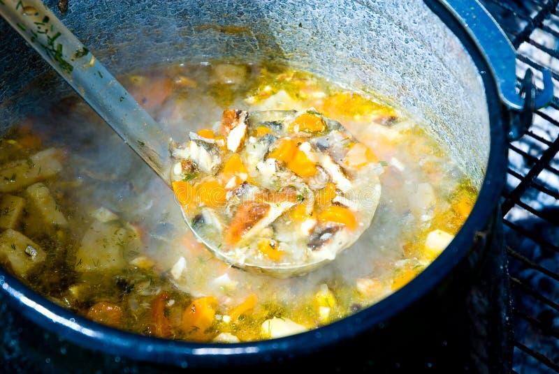 Minestra dei pesci fotografia stock