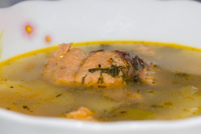 Minestra dei pesci con i salmoni immagine stock