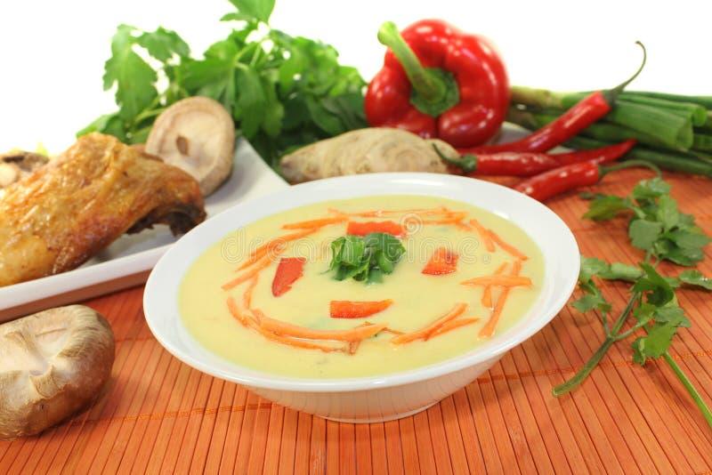 Minestra del curry con il pollo fotografie stock libere da diritti