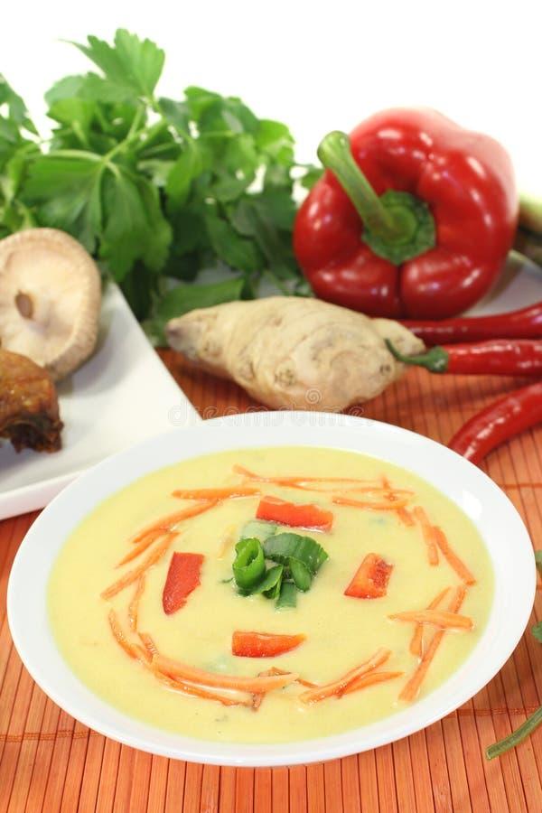 Minestra del curry con il pollo e le carote fotografie stock