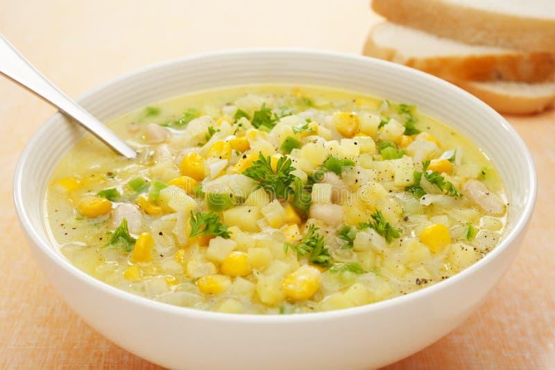 Minestra della zuppa di cereale con le patate ed il capsico verde immagine stock