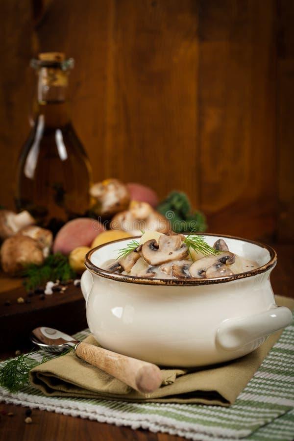 Minestra di patate del fungo fotografia stock libera da diritti