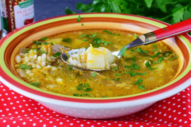 Minestra di riso riscaldata sul posto con la carne suina e la patata Alimento sano Concetto del pranzo fotografia stock