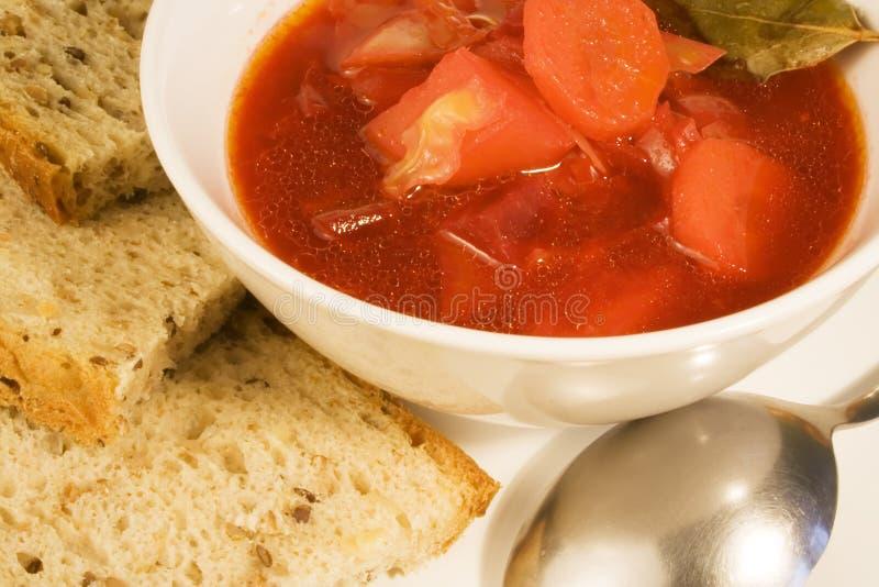 Minestra di verdura - borscht fotografia stock libera da diritti