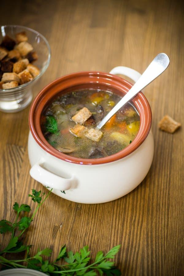 Minestra di verdura casalinga con i funghi ed i peperoni selvaggi in un piatto fotografie stock