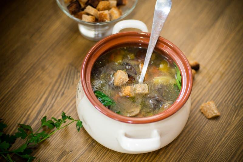 Minestra di verdura casalinga con i funghi ed i peperoni selvaggi in un piatto immagine stock libera da diritti