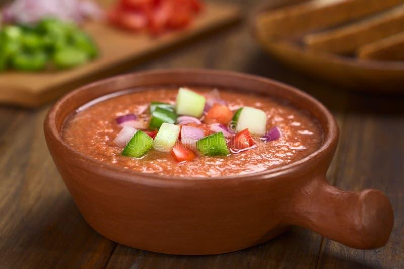 Minestra di verdura fredda di zuppa di verdure fredda spagnola fotografia stock libera da diritti