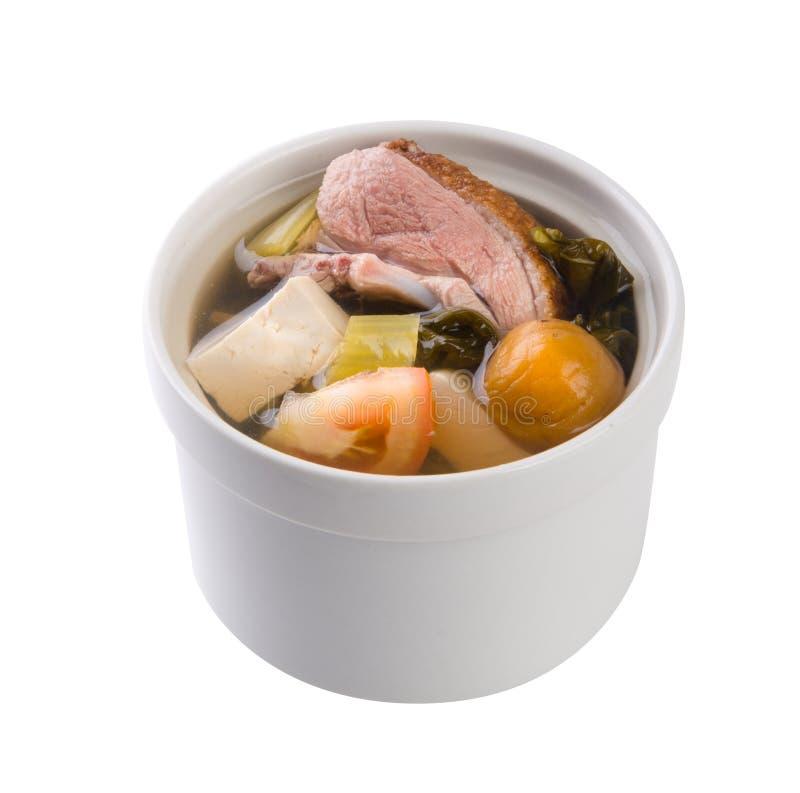 Minestra di verdura salata con il tofu e l'anatra immagine stock