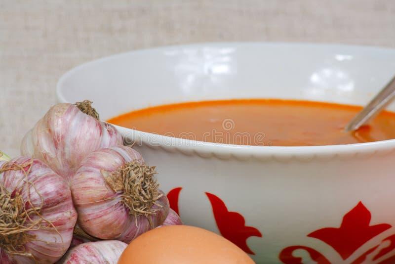 Minestra ed aglio fresco dall'orto fotografie stock