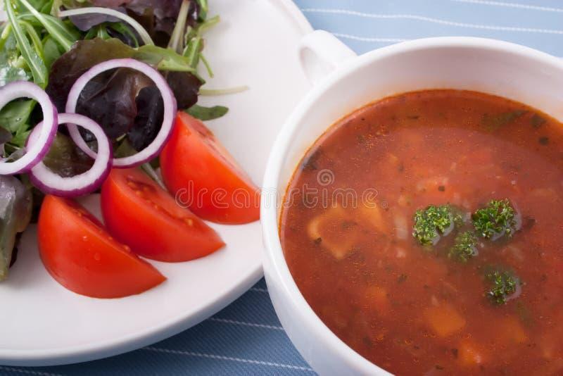 Minestra ed insalata immagine stock