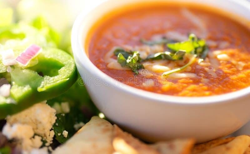 Minestra ed insalata sane, minestra del pomodoro immagine stock
