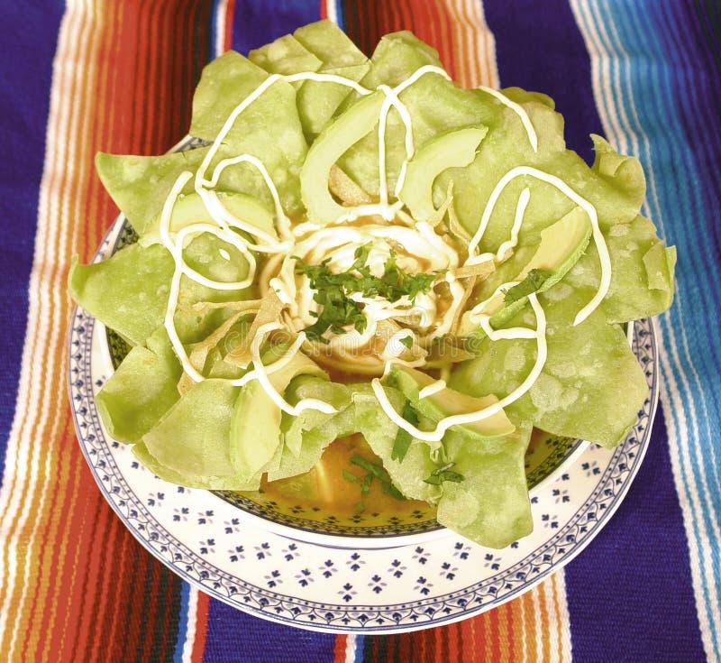 Minestra messicana della tortiglia fotografia stock