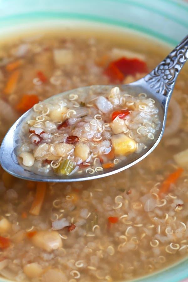 Minestra vegetariana con la quinoa, rosso del riso, lenticchie gialle, cereale, vigore fotografie stock