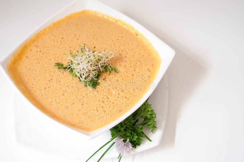 Minestra vegetariana della carota fotografia stock libera da diritti
