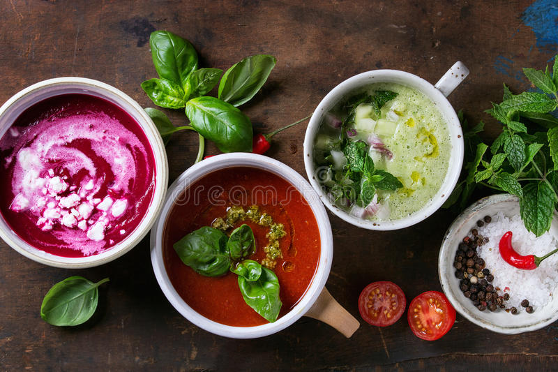 Minestre vegetariane fredde fotografia stock libera da diritti