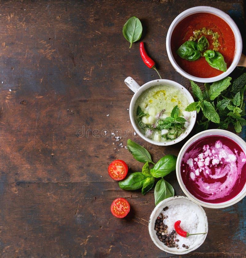 Minestre vegetariane fredde immagini stock libere da diritti