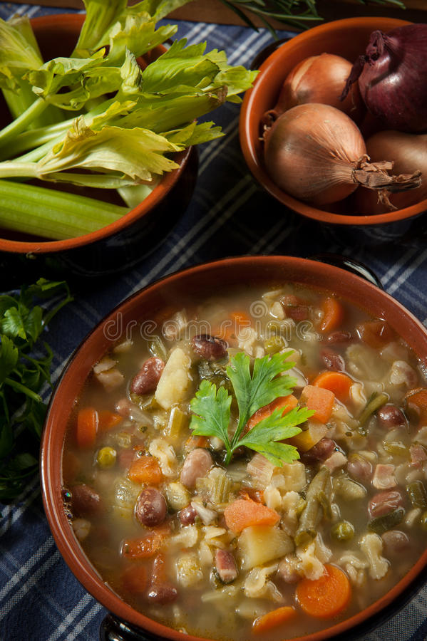 Download Minestrone - Soup With Vegetables Stock Image - Image: 22529637