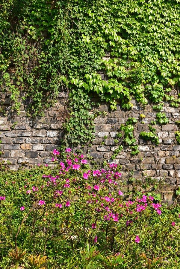 Download Ming Dynasty City Wall In De Lente Stock Afbeelding - Afbeelding bestaande uit china, landschap: 54084753