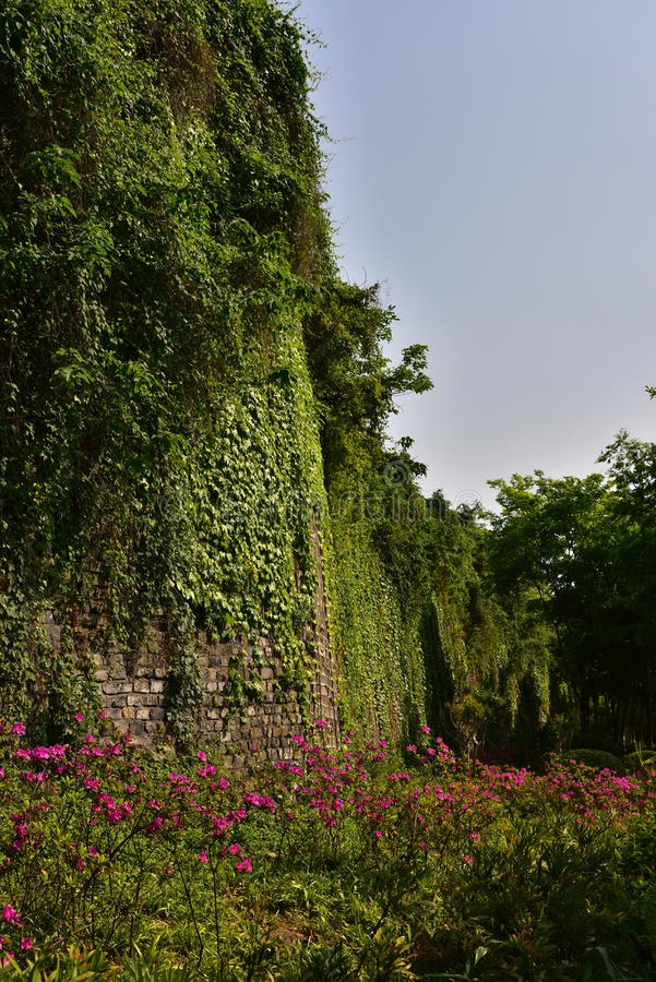 Ming Dynasty City Wall in the spring royalty free stock photos