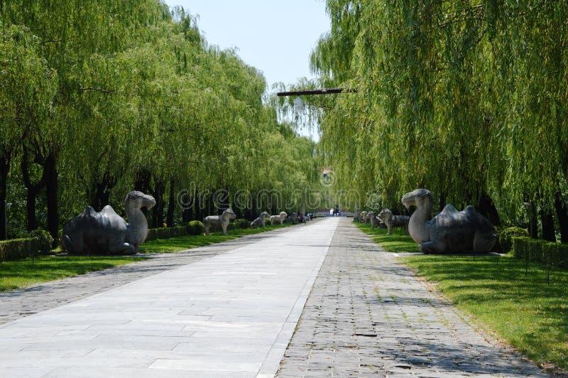 ming tombs fotografering för bildbyråer