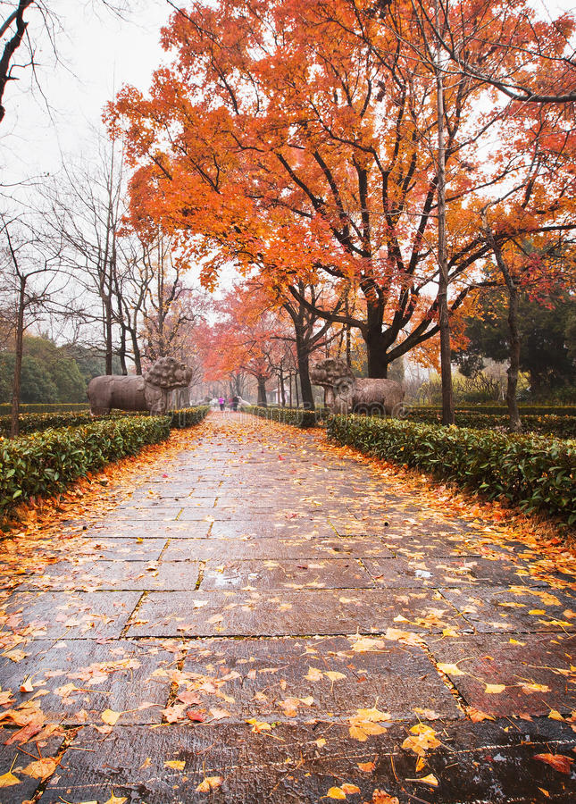 Ming Xiaoling Mausoleum von Nanjing stockfotografie