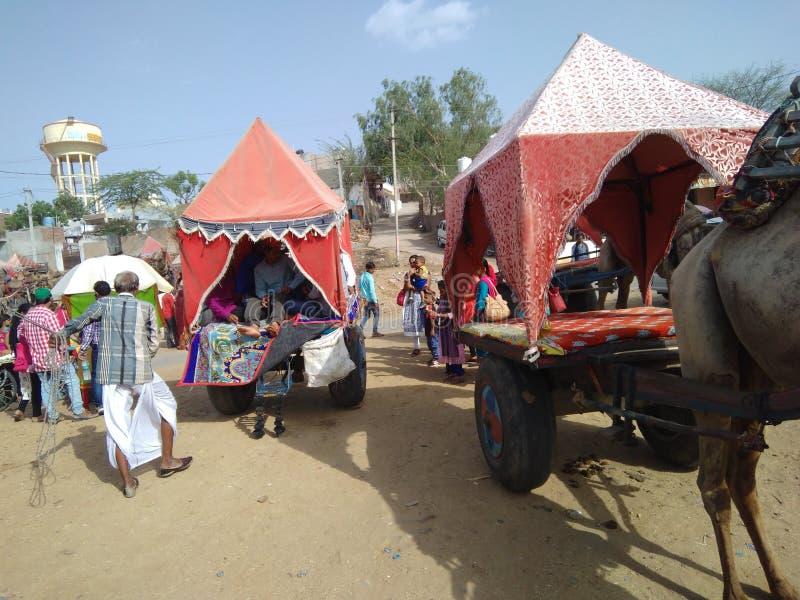 Minha excursão de Rajasthan Homem scinry do dressnice tradicional da equitação do camelo que joga a música foto de stock royalty free