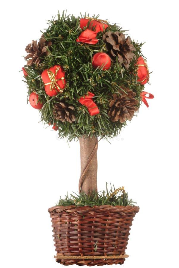 Mini árbol de navidad foto de archivo libre de regalías