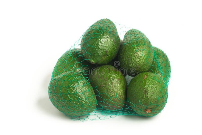 Mini Baby Avocado imagem de stock