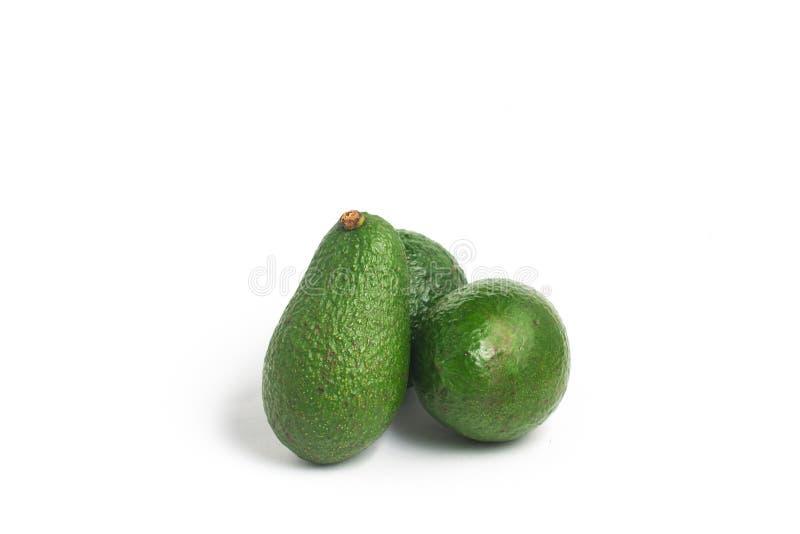 Mini Baby Avocado fotos de stock