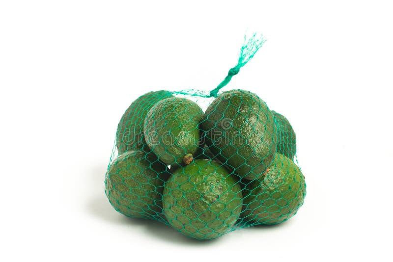 Mini Baby Avocado imagens de stock