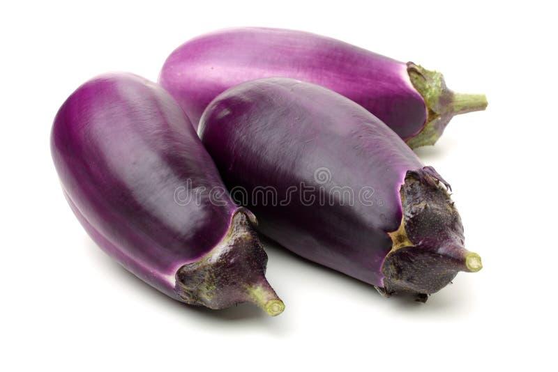 Mini Baby Eggplant stock foto