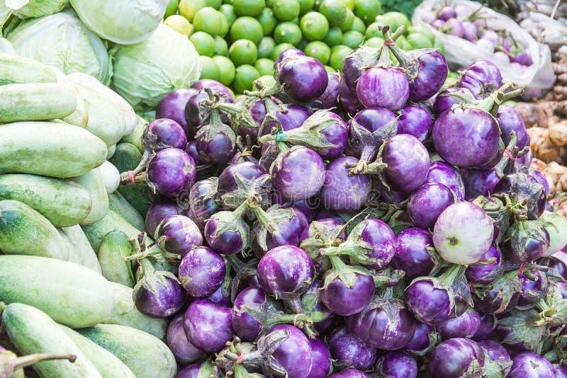 mini beringelas (beringelas do bebê) e vegetais na exploração agrícola local, th fotos de stock