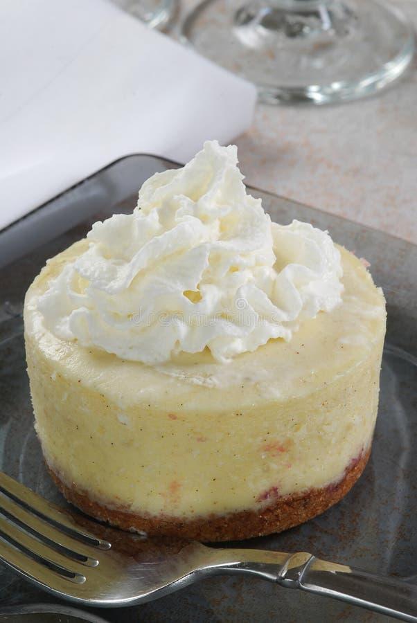 Mini bolo de queijo foto de stock royalty free