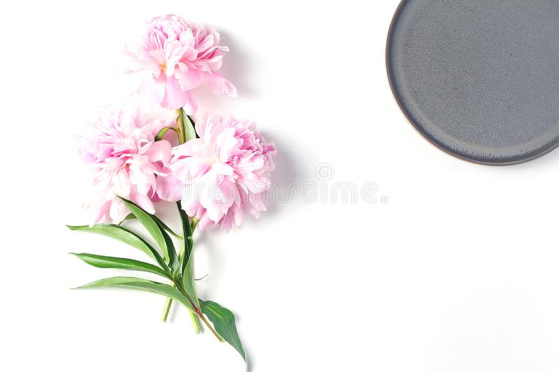 Mini bouquet of fresh pink peony flowers white background, flat lay, copy space.  royalty free stock photo