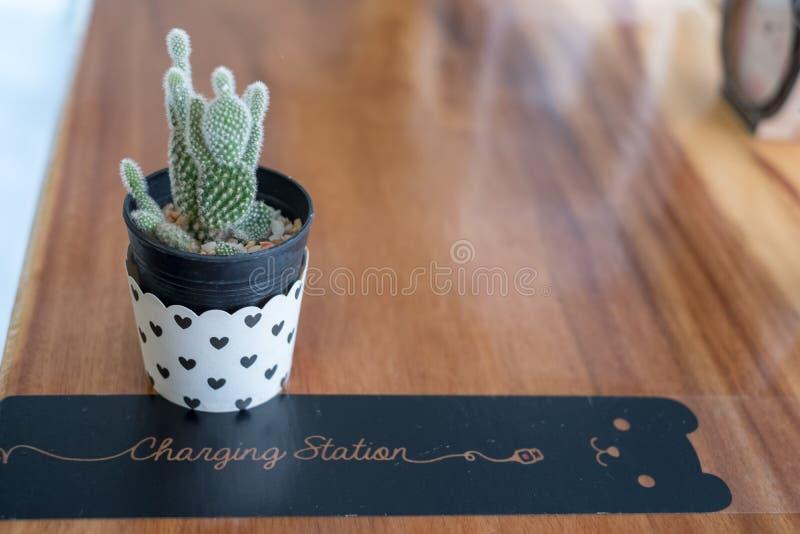 Mini Cactus i vas med mini- hjärta royaltyfria bilder