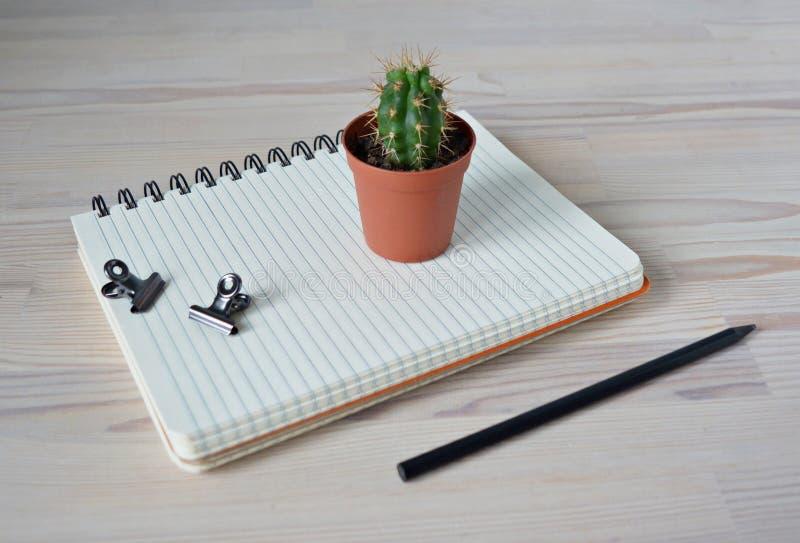 Mini cactus pot, black pencil, notebook and metal clips stock image