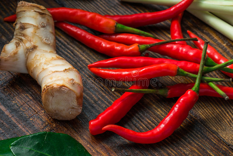 Mini chili peppers with galangal root and leaf of kaffir lime stock photography