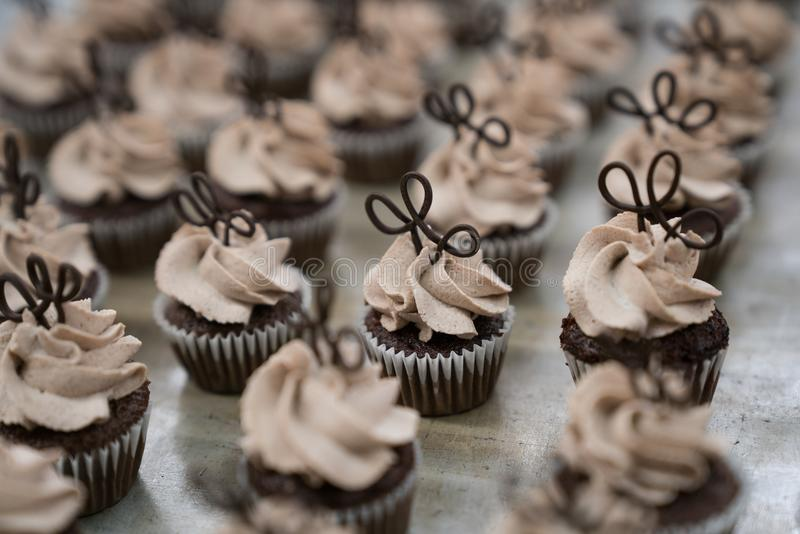 Mini Chocolate Cupcakes med chokladToppers arkivbilder
