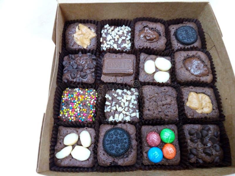 mini- chokladkaka i ask royaltyfria bilder