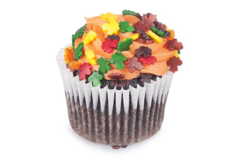 Mini Cupcakes fotografía de archivo