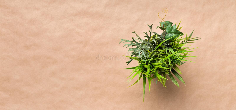 Mini dekoracyjna roślina w garnku na rzemiosło papierze zdjęcia royalty free