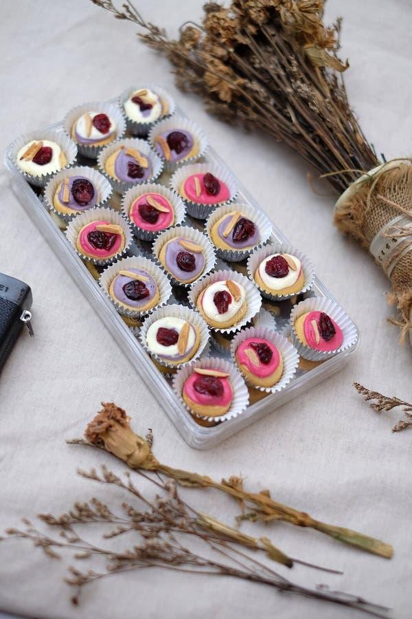 Mini Donuts com câmera e a folha seca fotografia de stock royalty free