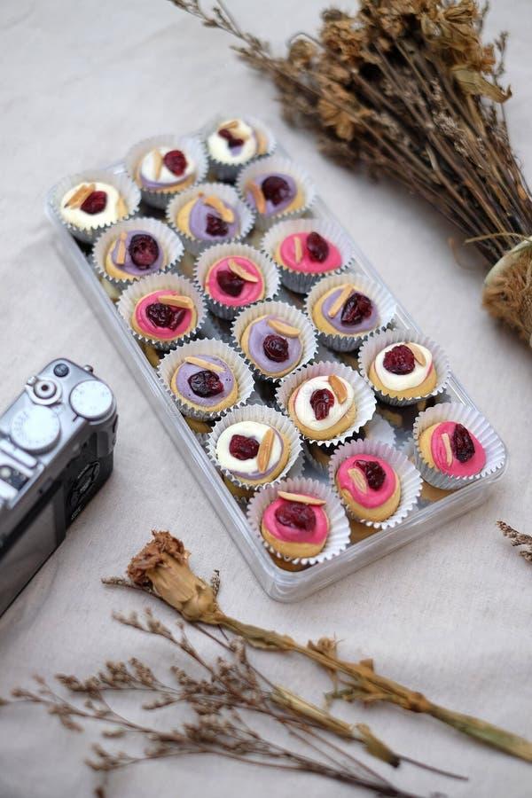 Mini Donuts com câmera e a folha seca fotos de stock royalty free