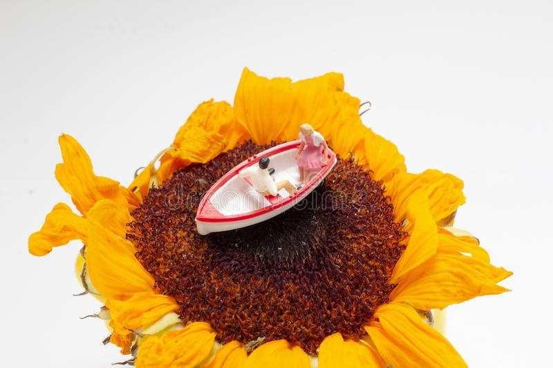 A  mini figure on boat on yellow flower. The mini figure on boat on yellow flower royalty free stock image